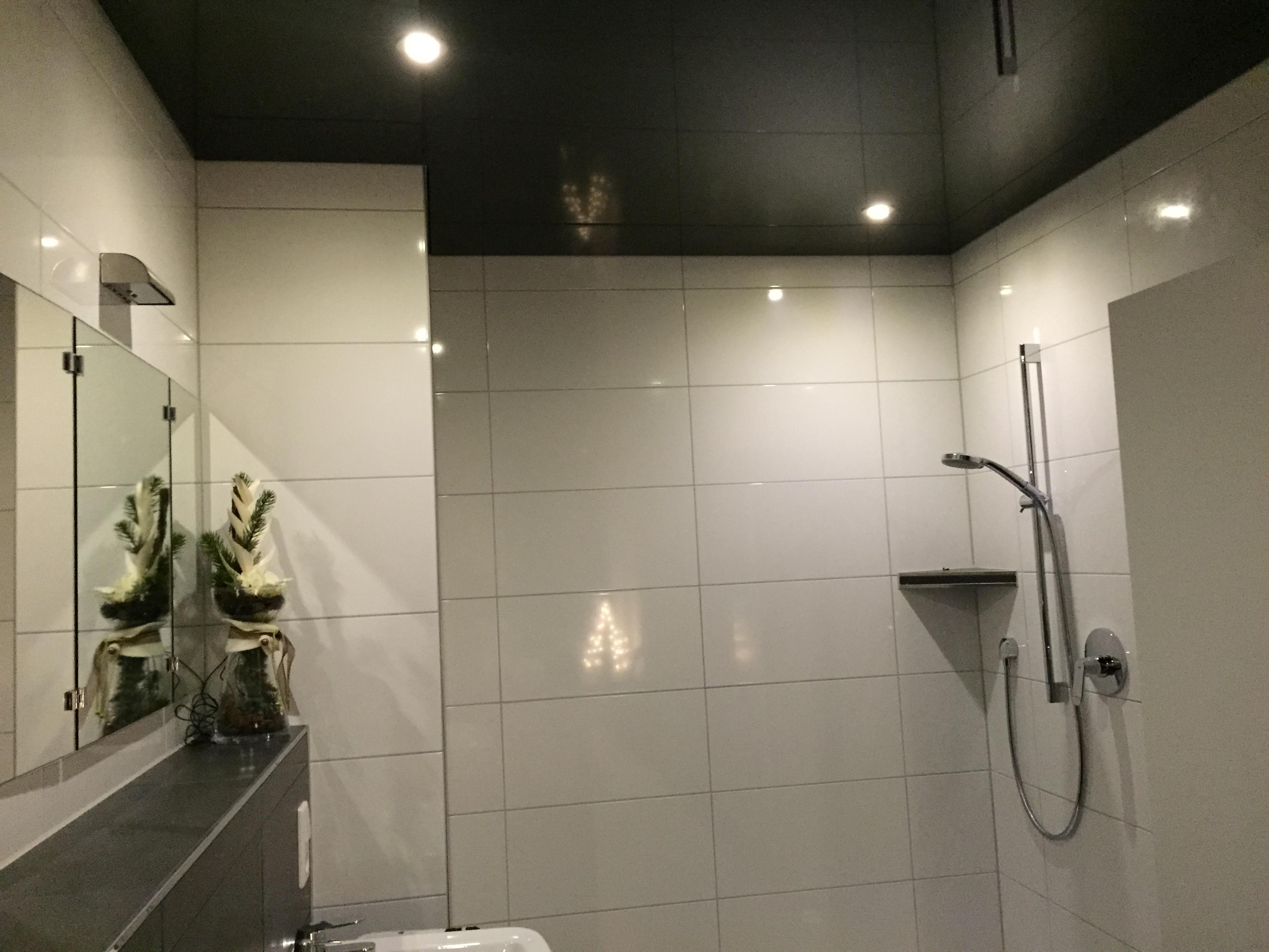spanndecken badezimmer kosten. Black Bedroom Furniture Sets. Home Design Ideas